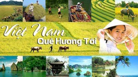 1374192228_vietnamquehuongtoi