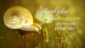 Hanh-phuc-la-mot-tien-trinh-dongten-21