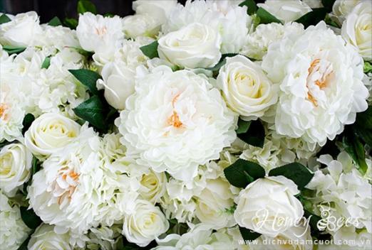 ngoisao-mau-don-trang-3-3676-1411610386