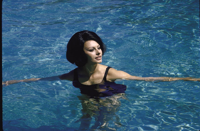 Sophia Loren swimming in the pool at the villa.  (Photo by Alfred Eisenstaedt//Time Life Pictures/Getty Images)