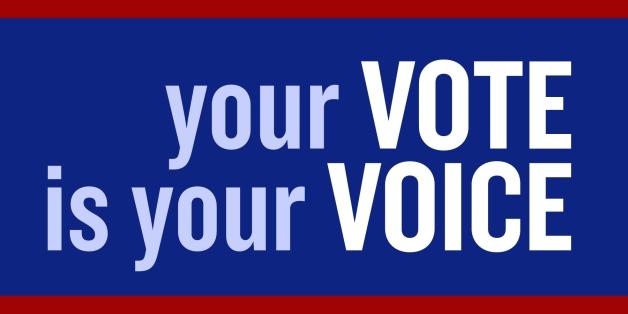 635959285824028688-1612106125_vote