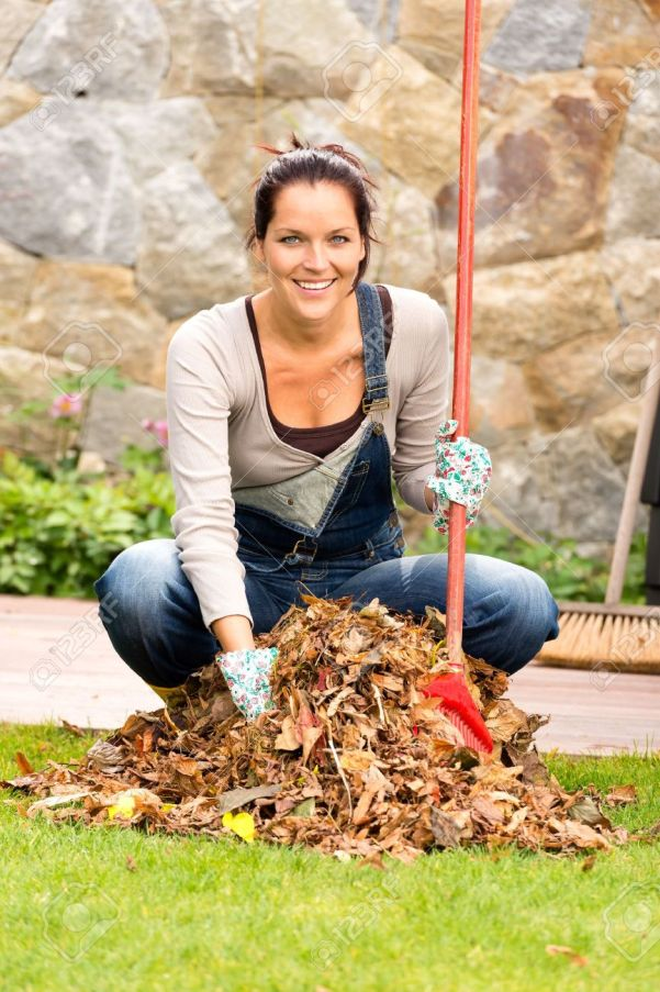 22144325-cheerful-woman-sweeping-leaves-fall-pile-backyard-housework-outdoor-stock-photo