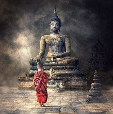 buddha-little-monk