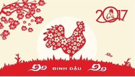 1479801889_nam-dinh-dau-2017-2319