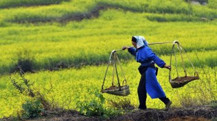 china-farmer-carrying-fertilizer